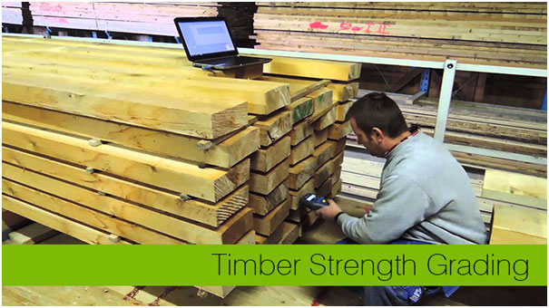 Quality Timber Strength Grading: A prediction of strength using scanned surface grain data and FE-analyses